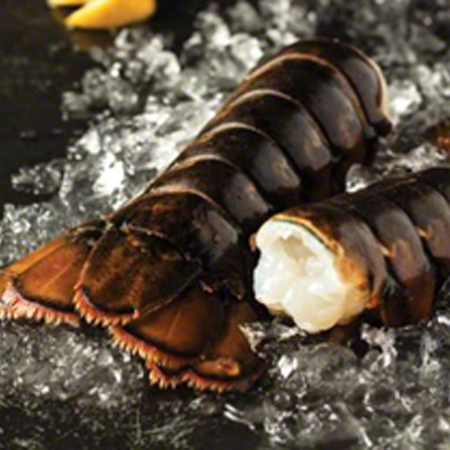 Free Yum! Omaha Steaks Maine Lobster Tails