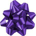 Shamrock Purple 14 Loop Star Bow - 2 3/4""